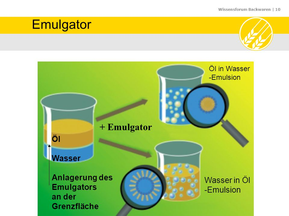 Emulgator + Emulgator Öl Wasser Anlagerung des Emulgators