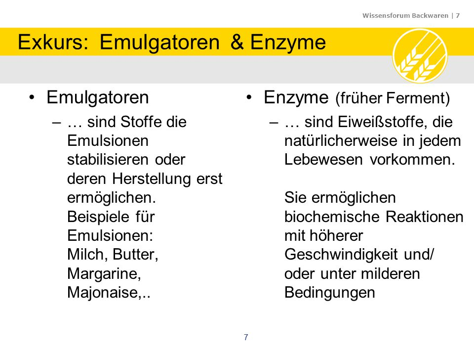 Exkurs: Emulgatoren & Enzyme