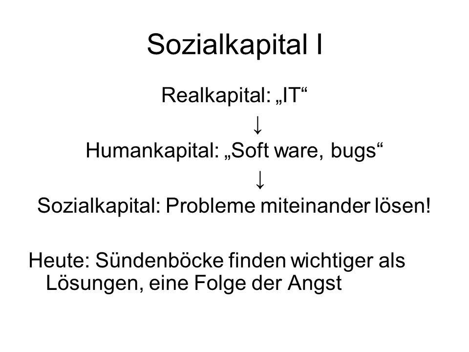 "Sozialkapital I Realkapital: ""IT ↓ Humankapital: ""Soft ware, bugs"