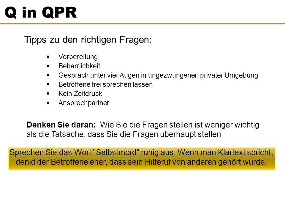 Q in QPR Tipps zu den richtigen Fragen: