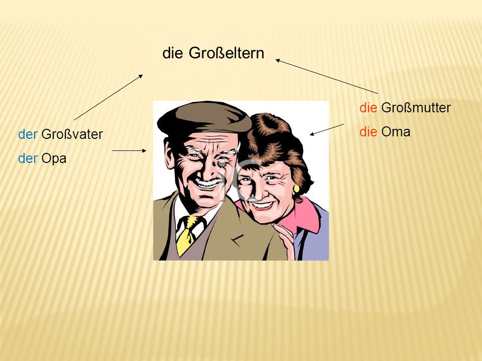 die Großeltern die Großmutter die Oma der Großvater der Opa