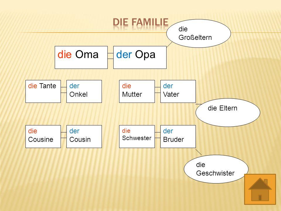 die Familie die Oma der Opa die Tante der Onkel der Vater die Mutter