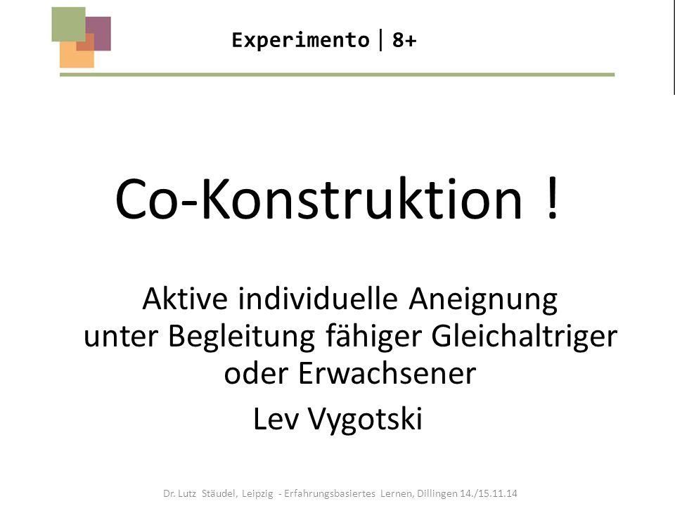 Experimento8+ Co-Konstruktion ! Aktive individuelle Aneignung unter Begleitung fähiger Gleichaltriger oder Erwachsener.
