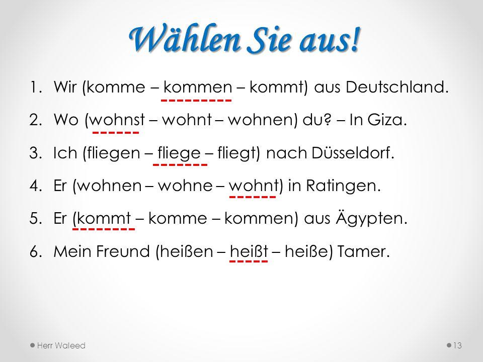 Wählen Sie aus! Wir (komme – kommen – kommt) aus Deutschland.