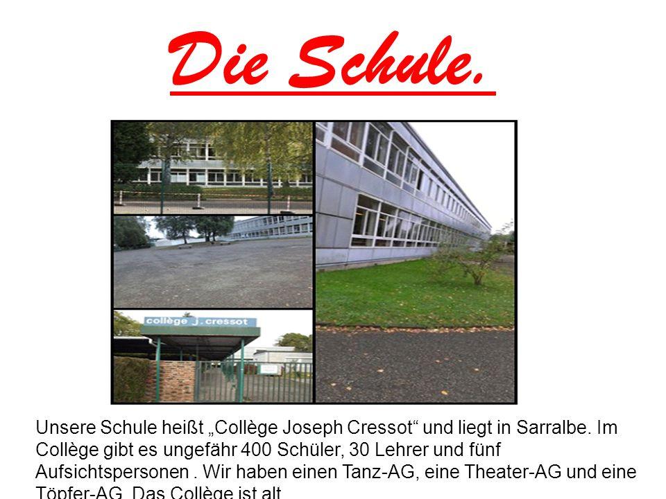 Die Schule.