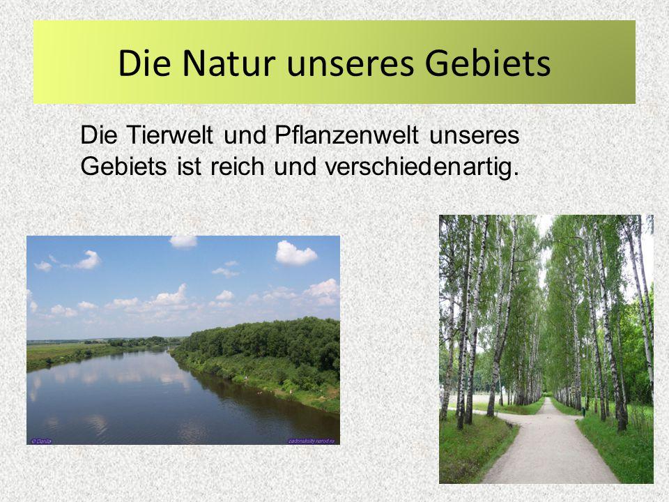 Die Natur unseres Gebiets