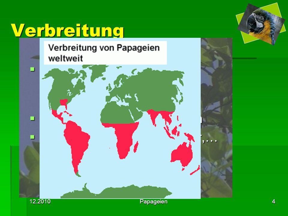Verbreitung leben auf allen Kontinenten ausgenommen Europa und Antarktis. meist Tropen und Subtropen.