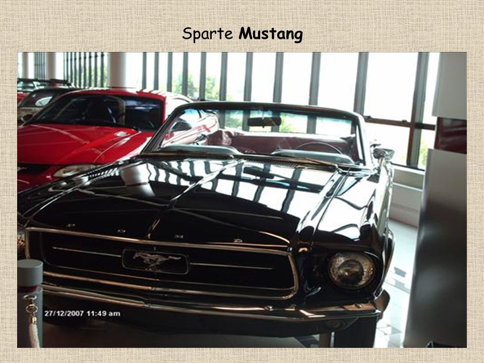 Sparte Mustang