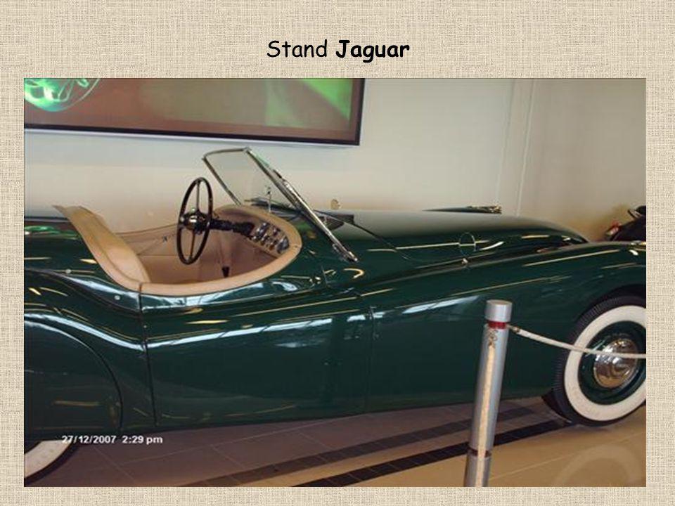 Stand Jaguar