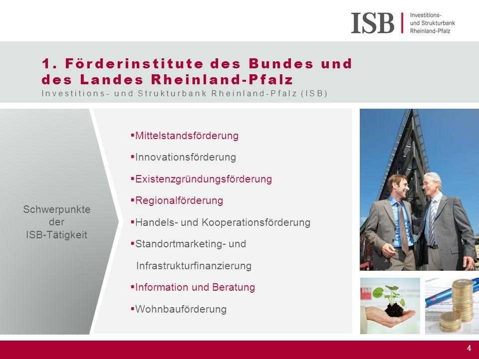 1. Förderinstitute des Bundes und des Landes Rheinland-Pfalz
