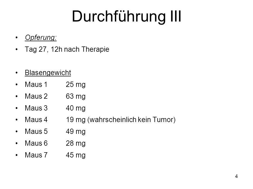 Durchführung III Opferung: Tag 27, 12h nach Therapie Blasengewicht