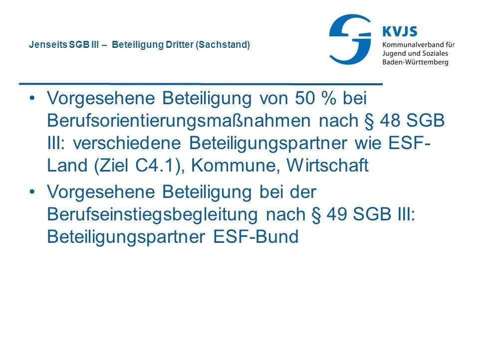 Jenseits SGB III – Beteiligung Dritter (Sachstand)