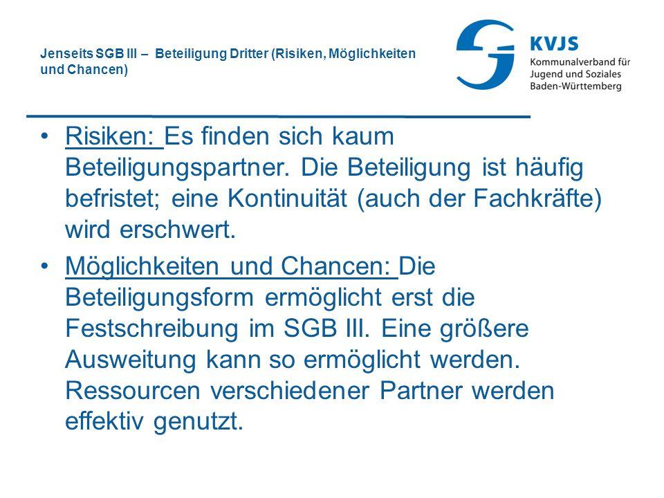 Jenseits SGB III – Beteiligung Dritter (Risiken, Möglichkeiten und Chancen)