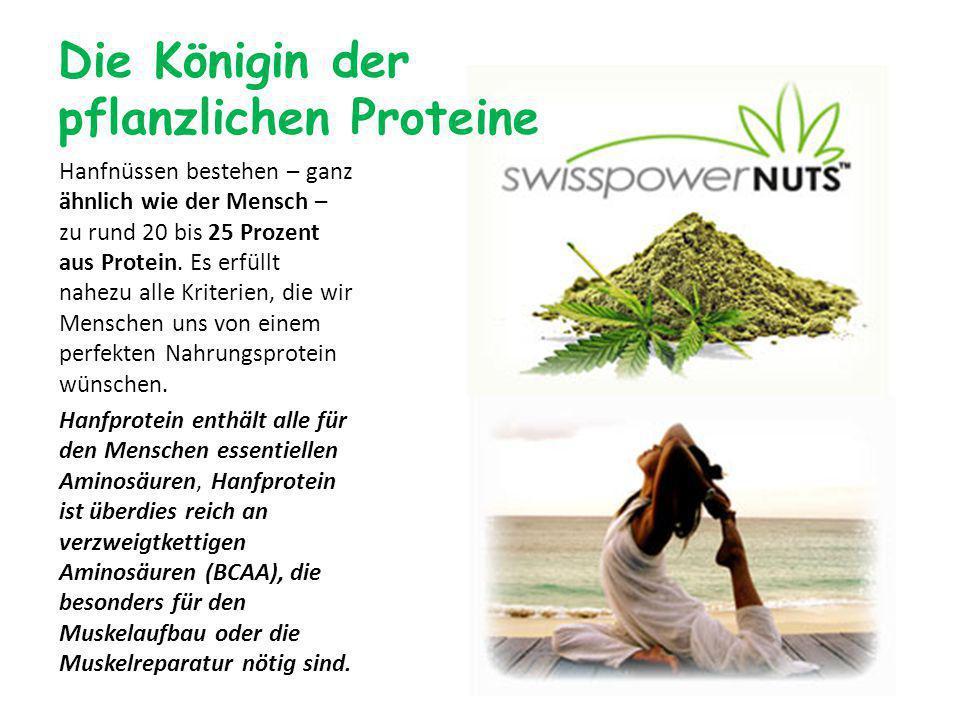 Die Königin der pflanzlichen Proteine