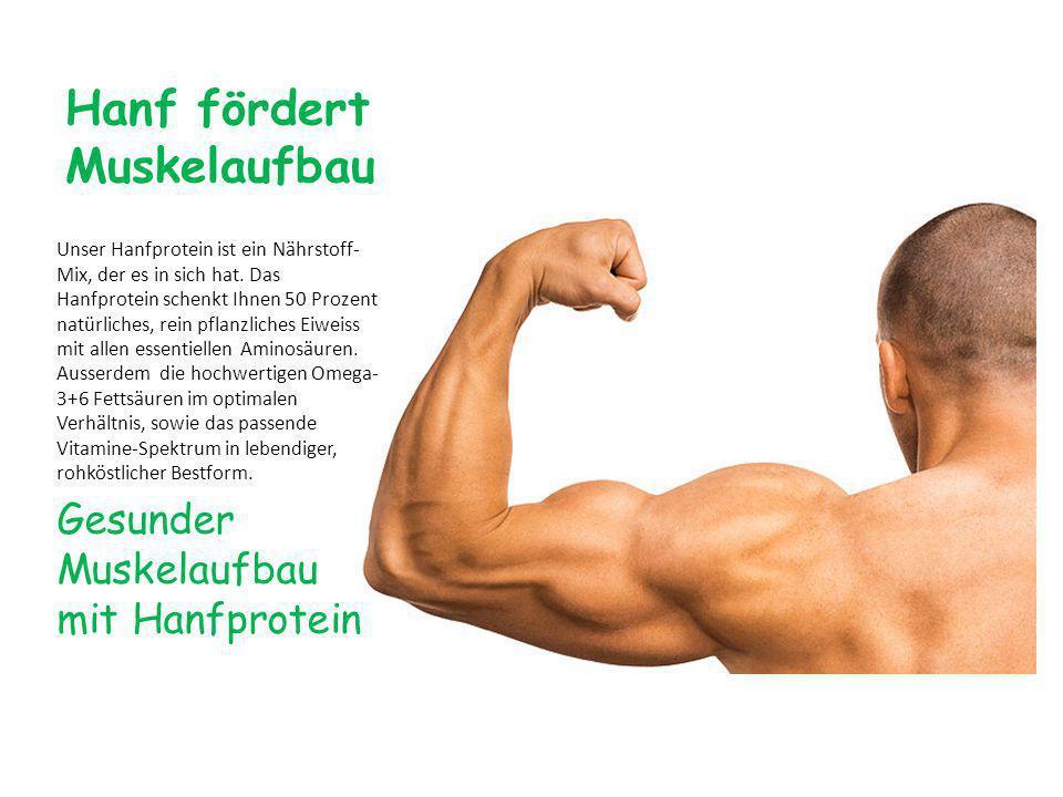 Hanf fördert Muskelaufbau