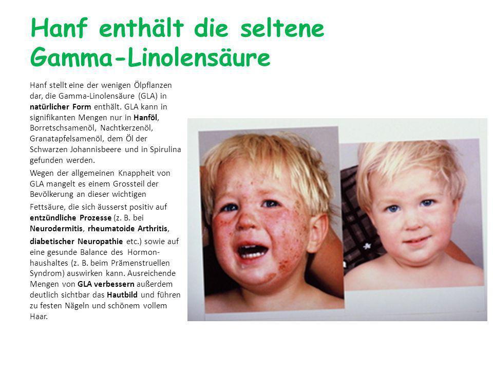 Hanf enthält die seltene Gamma-Linolensäure