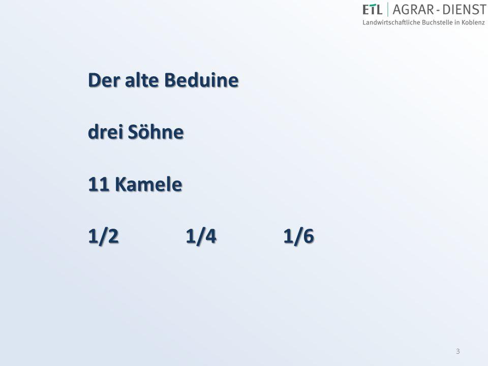 Der alte Beduine drei Söhne 11 Kamele 1/2 1/4 1/6