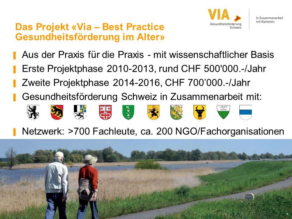 Das Projekt «Via – Best Practice Gesundheitsförderung im Alter»