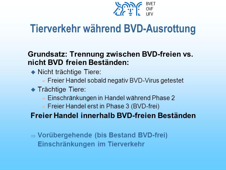 Tierverkehr während BVD-Ausrottung