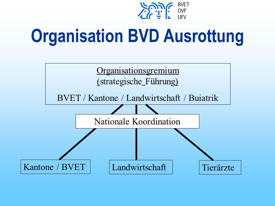 Organisation BVD Ausrottung