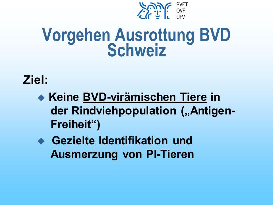Vorgehen Ausrottung BVD Schweiz