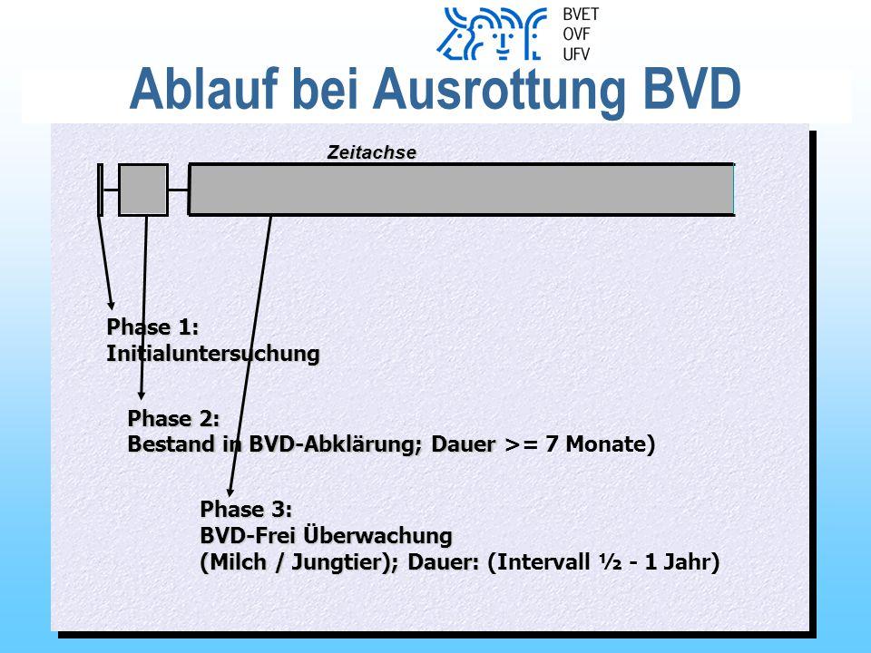 Ablauf bei Ausrottung BVD
