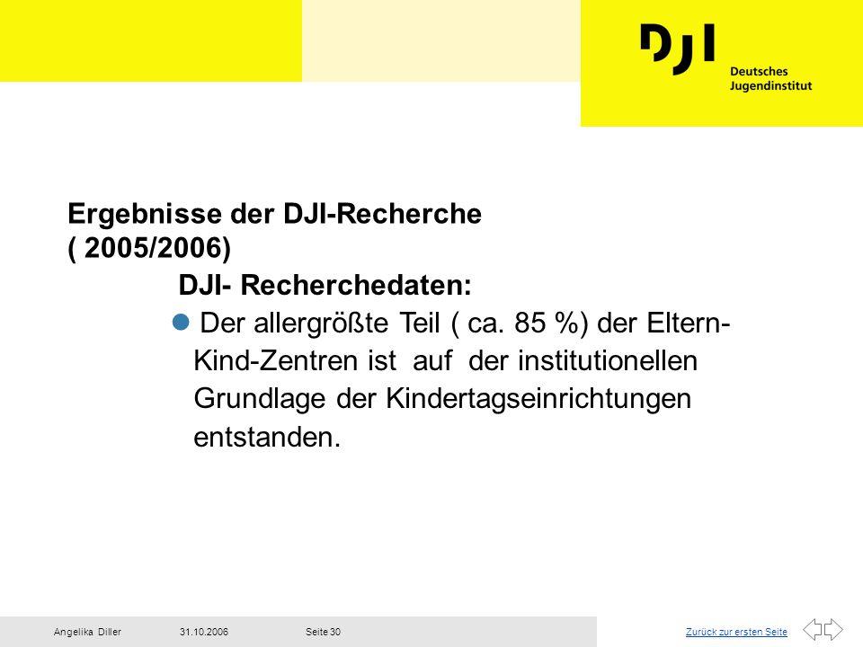 Ergebnisse der DJI-Recherche ( 2005/2006)