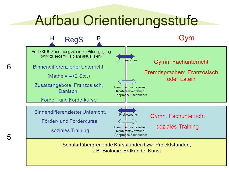 Aufbau Orientierungsstufe