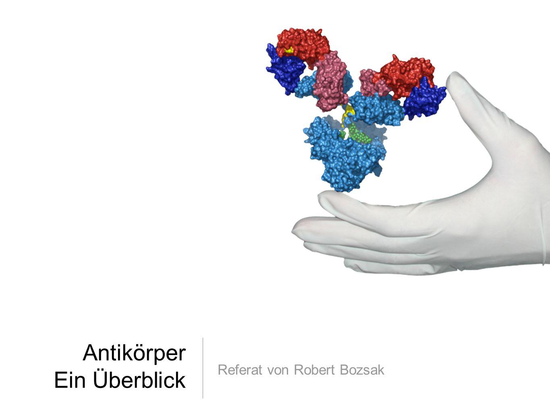 Antikörper Ein Überblick