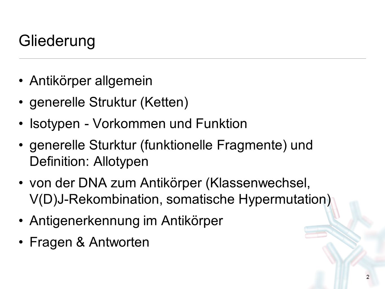 Gliederung Antikörper allgemein generelle Struktur (Ketten)