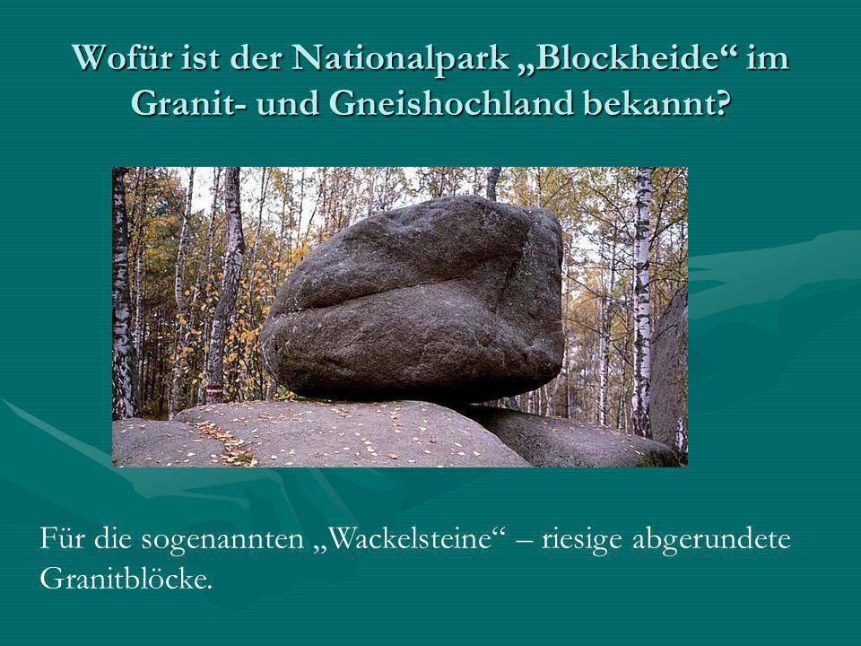"""Wofür ist der Nationalpark """"Blockheide im Granit- und Gneishochland bekannt"""