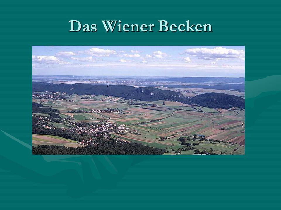 Das Wiener Becken