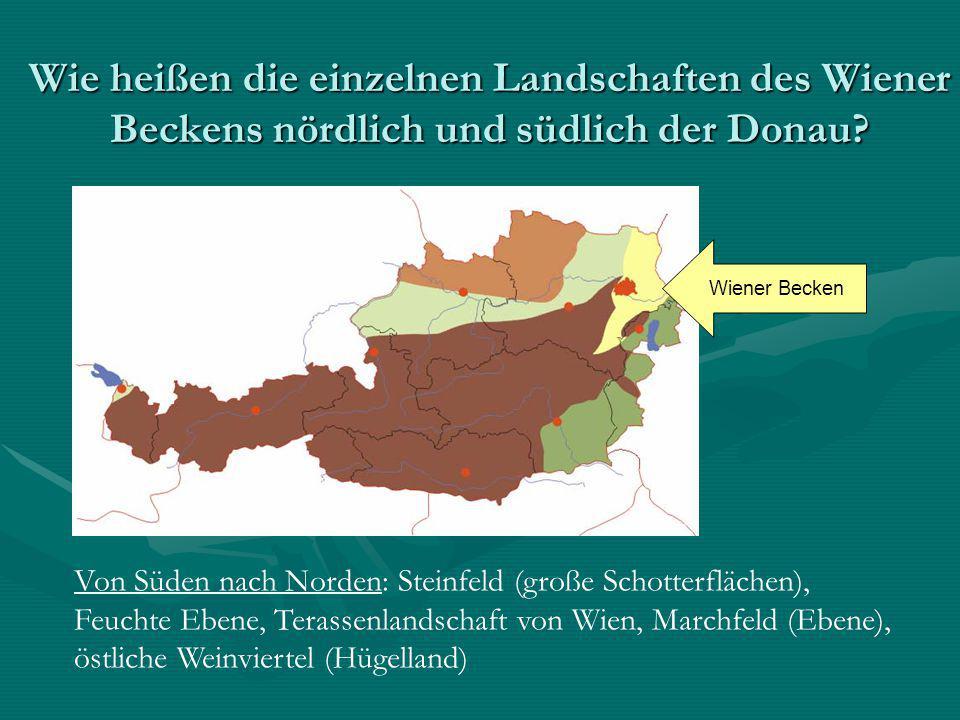 Wie heißen die einzelnen Landschaften des Wiener Beckens nördlich und südlich der Donau