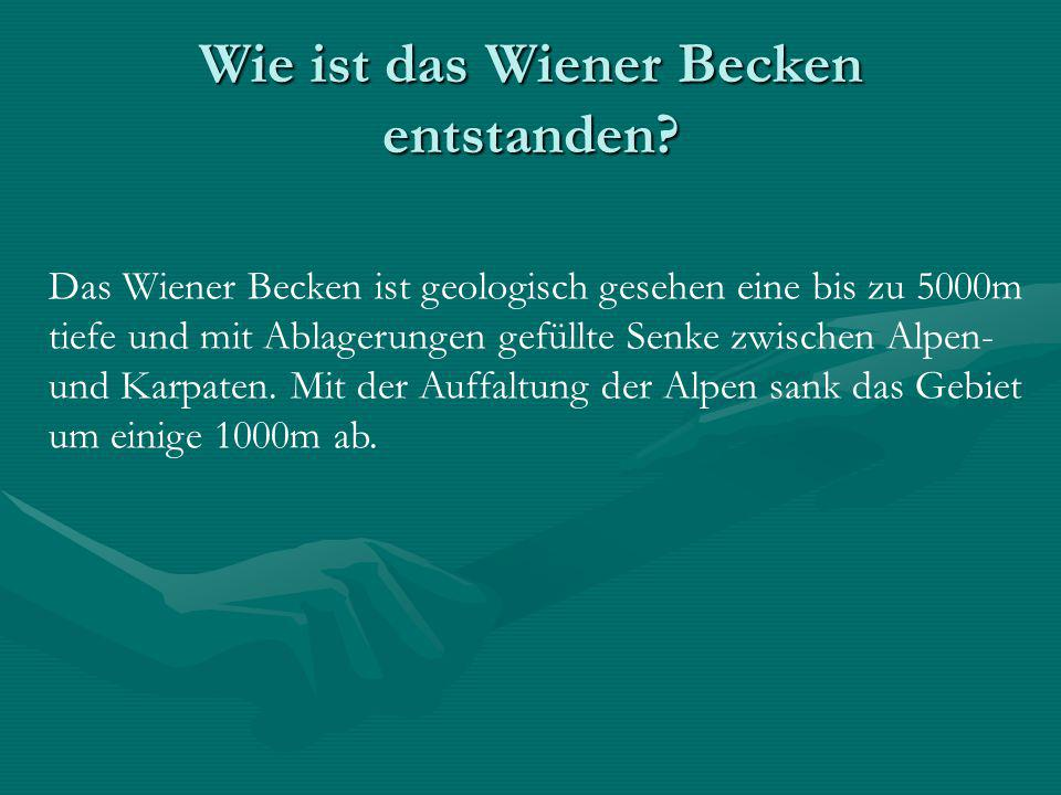 Wie ist das Wiener Becken entstanden