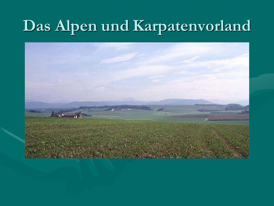 Das Alpen und Karpatenvorland