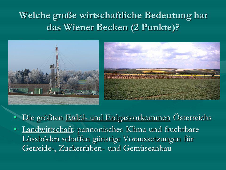 Welche große wirtschaftliche Bedeutung hat das Wiener Becken (2 Punkte)