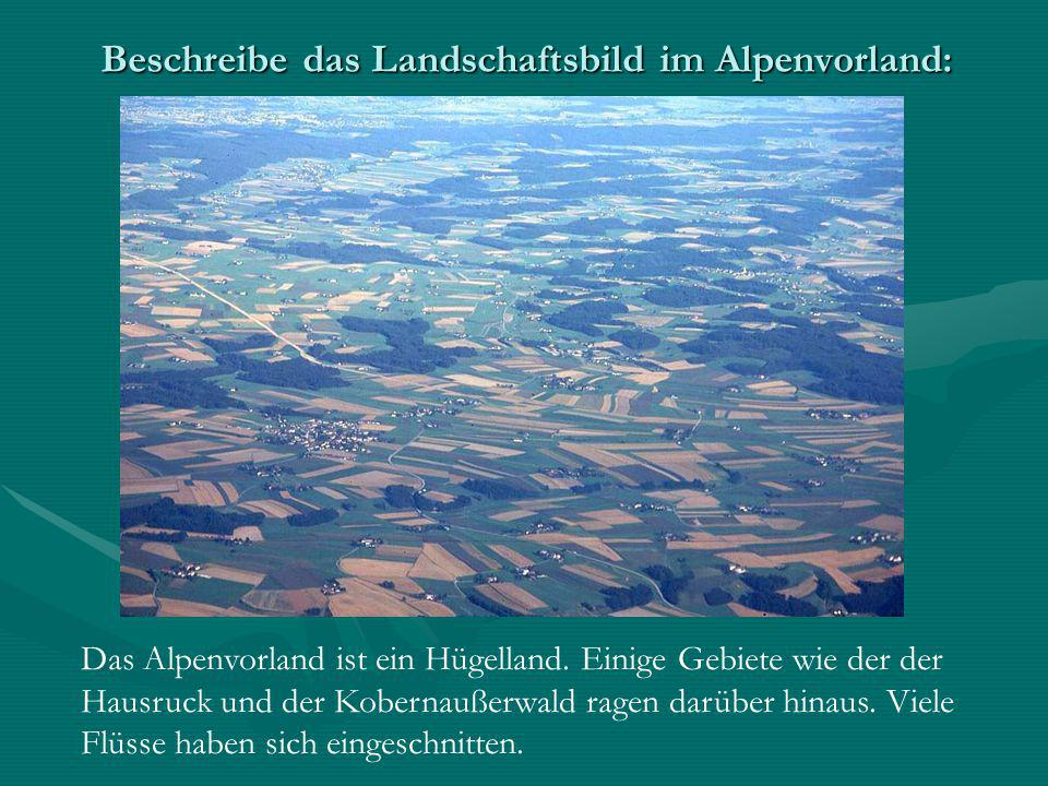 Beschreibe das Landschaftsbild im Alpenvorland: