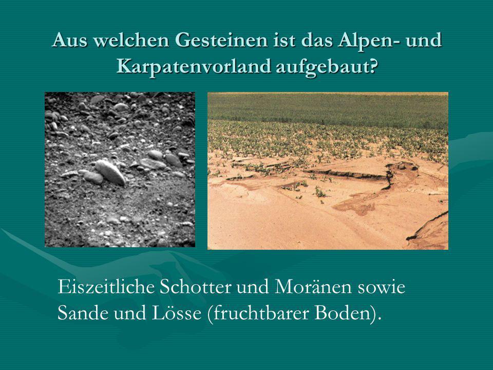 Aus welchen Gesteinen ist das Alpen- und Karpatenvorland aufgebaut