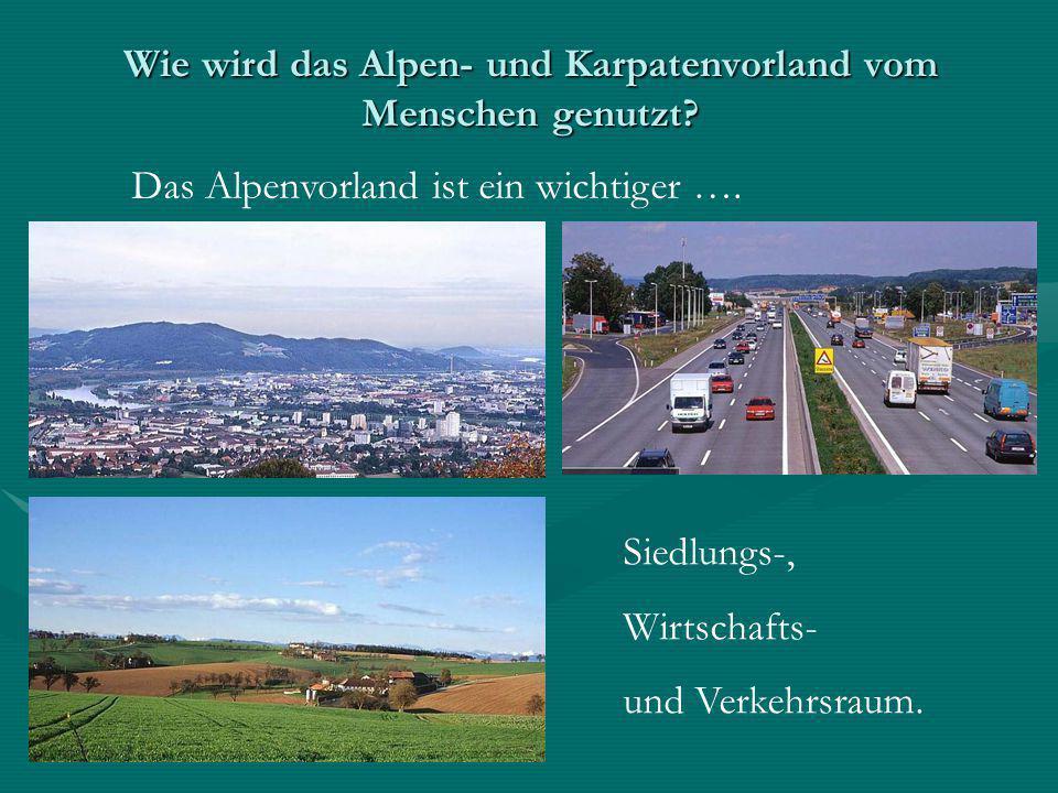 Wie wird das Alpen- und Karpatenvorland vom Menschen genutzt