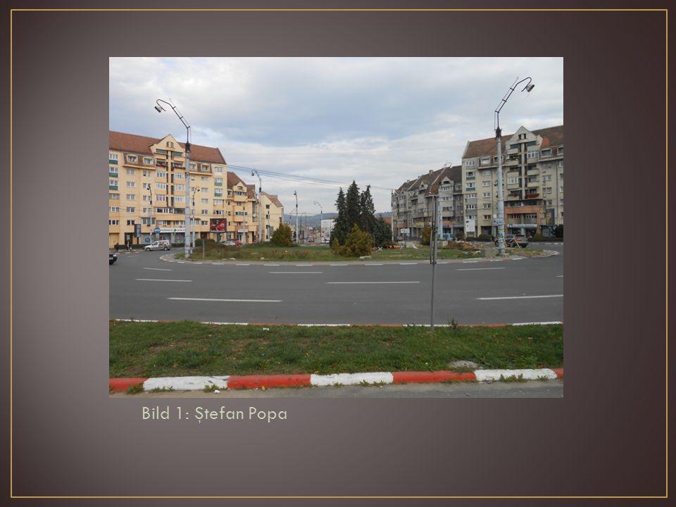 Bild 1: Ştefan Popa