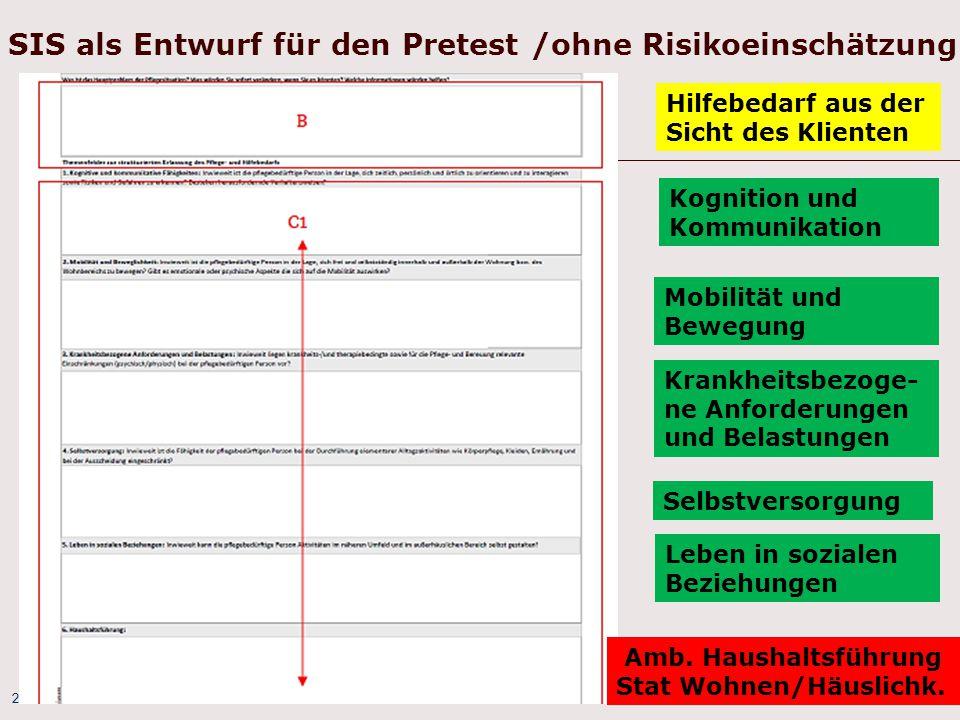 SIS als Entwurf für den Pretest /ohne Risikoeinschätzung