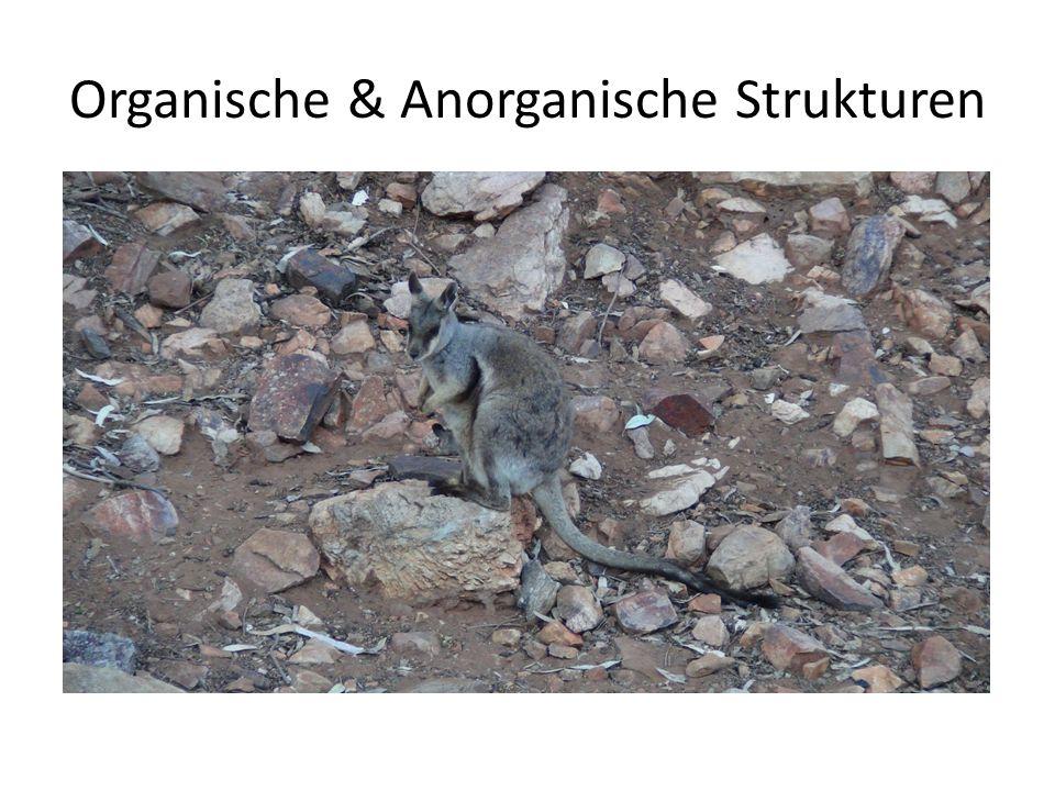 Organische & Anorganische Strukturen