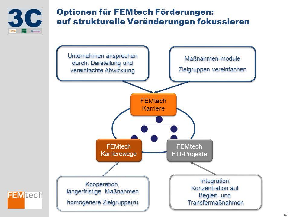Optionen für FEMtech Förderungen: auf strukturelle Veränderungen fokussieren