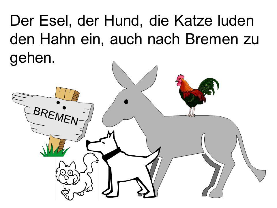 Der Esel, der Hund, die Katze luden den Hahn ein, auch nach Bremen zu gehen.