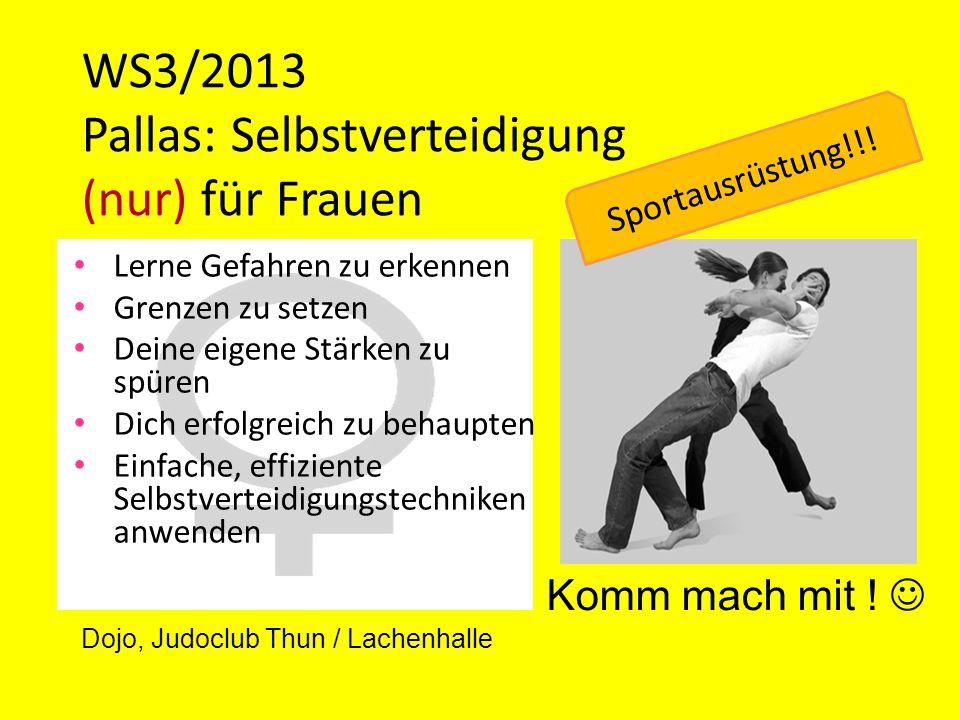 WS3/2013 Pallas: Selbstverteidigung (nur) für Frauen