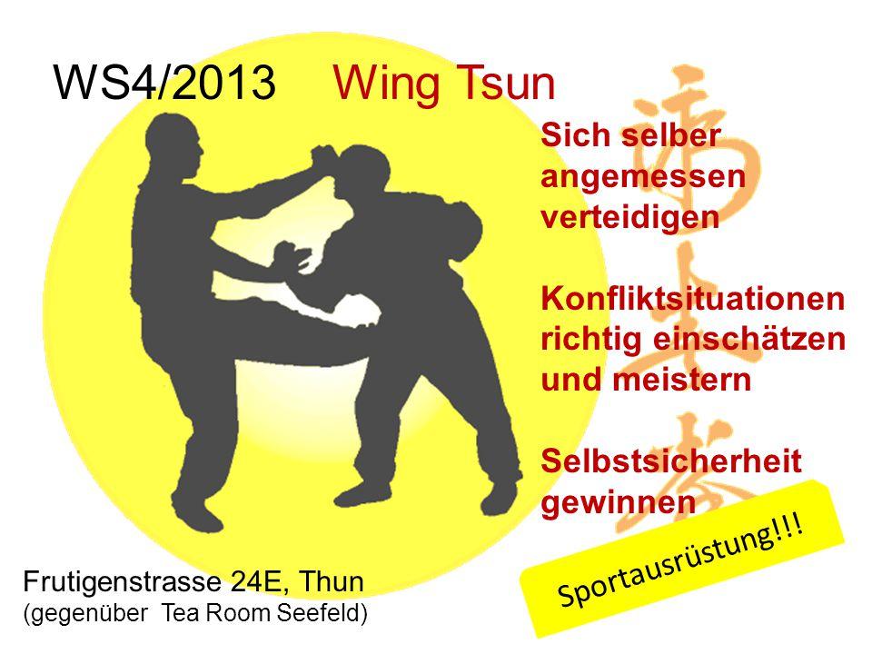 WS4/2013 Wing Tsun Sich selber angemessen verteidigen