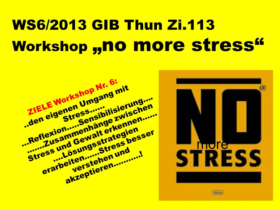 "WS6/2013 GIB Thun Zi.113 Workshop ""no more stress"