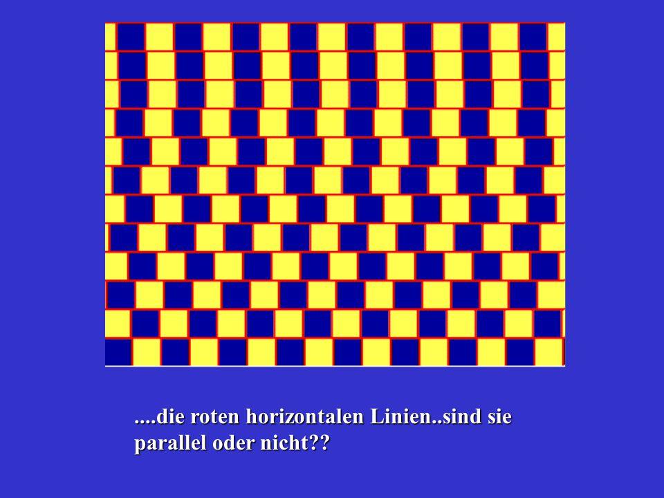 ....die roten horizontalen Linien..sind sie parallel oder nicht