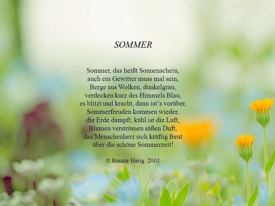 SOMMER Sommer, das heißt Sonnenschein, auch ein Gewitter muss mal sein, Berge aus Wolken, dunkelgrau, verdecken kurz des Himmels Blau, es blitzt und kracht, dann ist's vorüber, Sommerfreuden kommen wieder, die Erde dampft, kühl ist die Luft, Blumen verströmen süßen Duft, das Menschenherz sich kräftig freut über die schöne Sommerzeit.