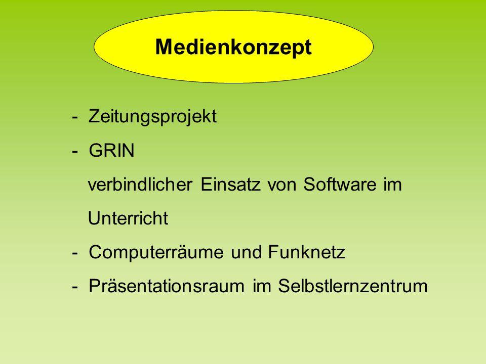 Medienkonzept - Zeitungsprojekt - GRIN